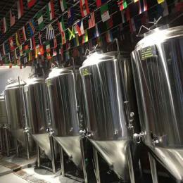 小型精酿啤酒设备价格