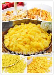 鑫贝发诸城早餐谷物生产加工机器畅销玉米片挤压机