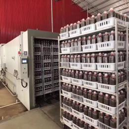 食用菌灭菌器供应厂家   单开门食用菌灭菌器