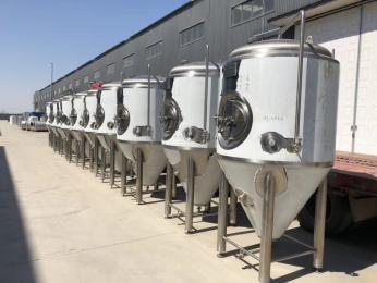 国产精酿啤酒设备价格 进口精酿啤酒设备哪家好