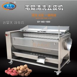 赣云1500型毛辊土豆去皮机田螺花生红薯清洗机