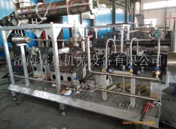 专业生产宠物饲料颗粒机,湿法鱼饲料机械