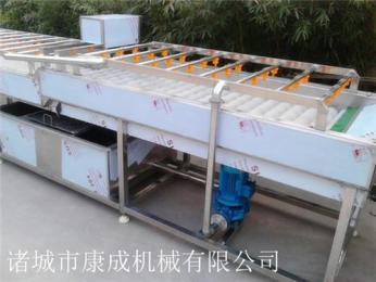 供应猪头清洗机 毛辊清洗设备