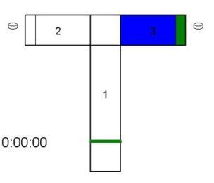 T型迷宫,T迷宫,水迷路系统