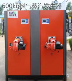小型蒸汽锅炉 燃油燃气蒸汽锅炉 蒸汽发生器600公斤免年检锅炉