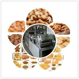 炭烧煎饼牛奶味饼干机  法式薄饼香橙味酥脆薄饼休闲零食饼干生产线 咸味饼干生产线