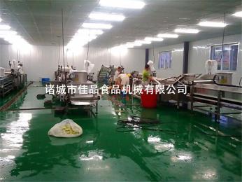 蔬菜清洗机价格 佳品机械