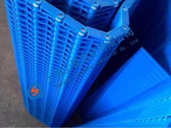 食品清洗杀菌线5935塑料网带流水线