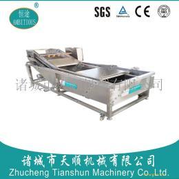 恒途牌TSXQ-30型水果蔬菜清洗加工设备/水果蔬菜清洗加工流水线