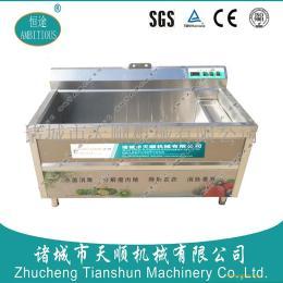 好用的恒途TSXC-12型蔬菜杀菌清洗机/果蔬臭氧消毒青洗机厂家直销