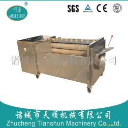 哪里生产的胡萝卜清洗机好用/山东天顺TSXM-15型根茎菜清洗机专业研发生产