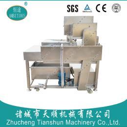 天顺TSXZ-12型上下两排毛辊高压水清洗粽叶设备/厂家专业研发制作省人工/直销