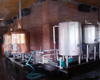 300L酒店精酿啤酒设备