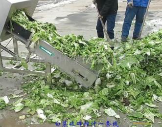 甘肃小型果蔬压榨机设备处理效果更好