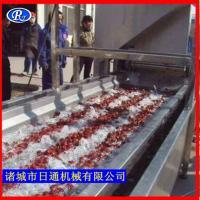 大枣清洗机 水果清洗机 净菜加工设备日通机械技术支持