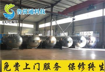 1540电加热硫化罐加热功率可调食用菌杀菌锅