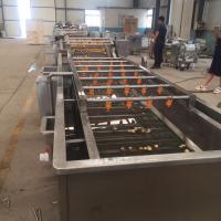 氣泡清洗機生產廠家水果蔬菜清洗機