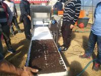 泡沫穴育苗生产线----常州风雷精机