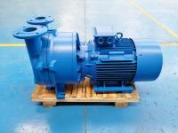 2BV纳西姆2BV5161水环真空泵