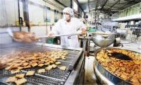 新疆大棗烘干機 三層網帶式烘干設備 廠家特價直銷