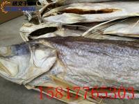 厂家直销淡水鱼低温除湿机海鱼干冷风干燥设备