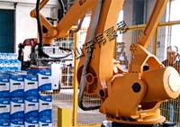 装箱码垛生产线价格 非标定制机器人码垛机厂家
