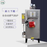 蒸汽锅炉蒸气发生器