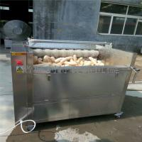 利特机械新款土豆清洗机、大姜清洗机、毛辊清洗去皮机