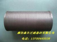 ZNGL02011301油站不銹鋼濾芯