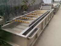 供应食用菌香菇清洗机 安邦机械制造