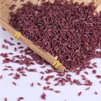 抖音五谷丁主播热门推荐谷香紫淮山紫薯米颗粒生产机械设备