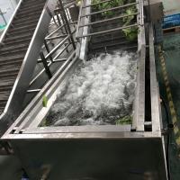 青菜气泡清洗机 水果气泡清洗生产线