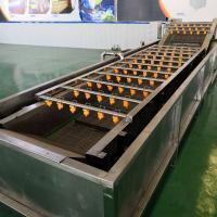 蔬菜加工生产线  茎叶类气泡清洗机