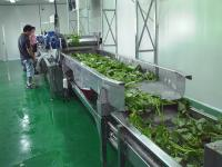 中央厨房净菜加工设备生产线