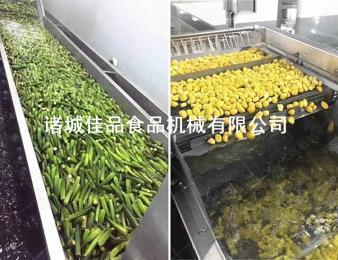 佳品机械全自动冻干蔬菜清洗线