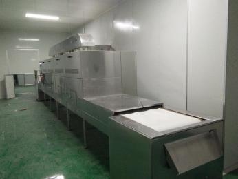 西瓜子微波干燥殺菌設備