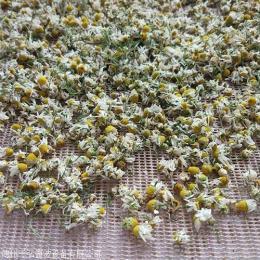 自动化燕麦干燥杀菌设备厂商D