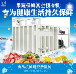 山野菜速冷保鲜机 果蔬真空预冷机 蔬菜真空冷却机消除田间热
