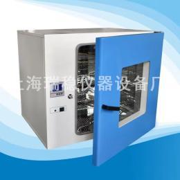 250度台式鼓风干燥箱DHG-9240A