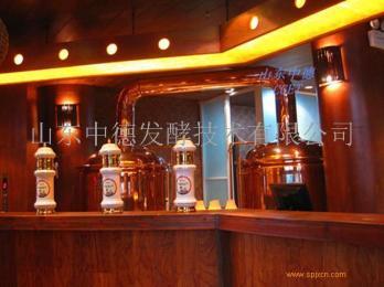 300升啤酒屋设备 山东中德
