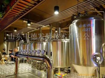 1000L自酿啤酒设备  山东中德