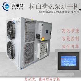 杭州空气能杭白菊烘干机杭白菊干燥设备