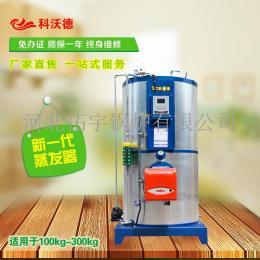 大型商用蒸汽发生器热水锅炉食品业干洗