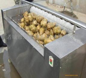根茎类洗菜机