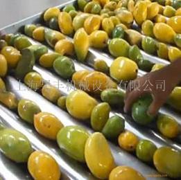 芒果汁芒果醬芒果干加工生產線整廠設備交鑰匙工程