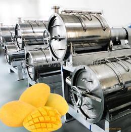 上海果丰机械 打浆精致机 1吨每小时-20吨每小时 按需定制