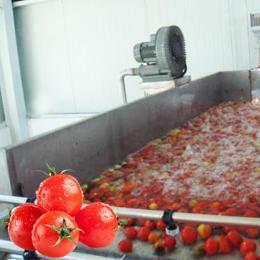 番茄醬番茄沙司番茄罐頭番茄汁加工生產線整廠設備交鑰匙工程