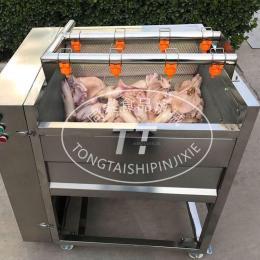 毛刷式猪头清洗机