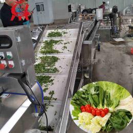 蔬菜清洗机 净菜加工设备 果蔬清洗机