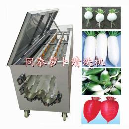 自动洗白萝卜机器  电动白萝卜清洗机